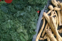 Zimowe warzywa 1